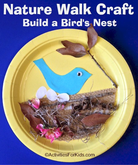 Nature walk activities for kids - Birds Nest Craft.  Gather sticks, moss, bark and other objects that a bird might use to make a nest. #springcraft